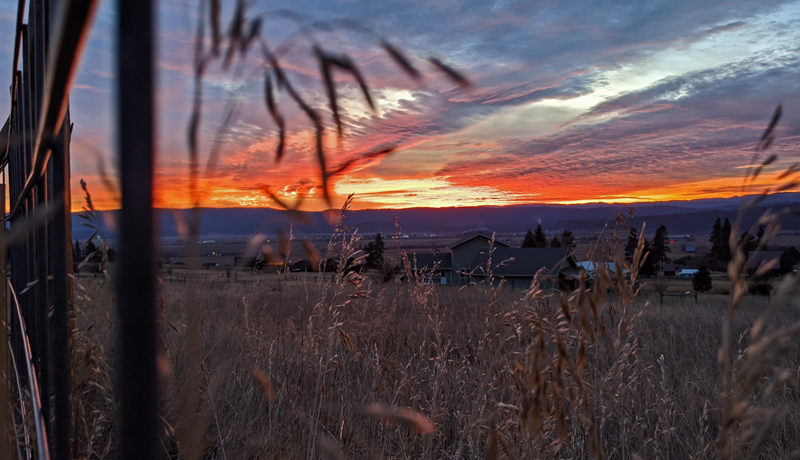 sunset through fence