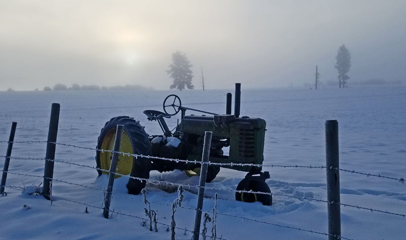 old tractor in pasture