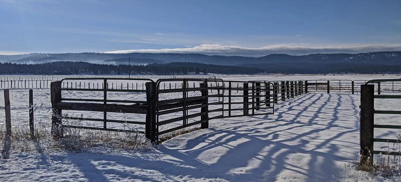 pasture gates and fences