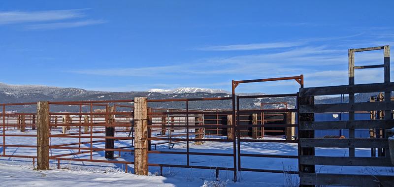metal tube fences and gates