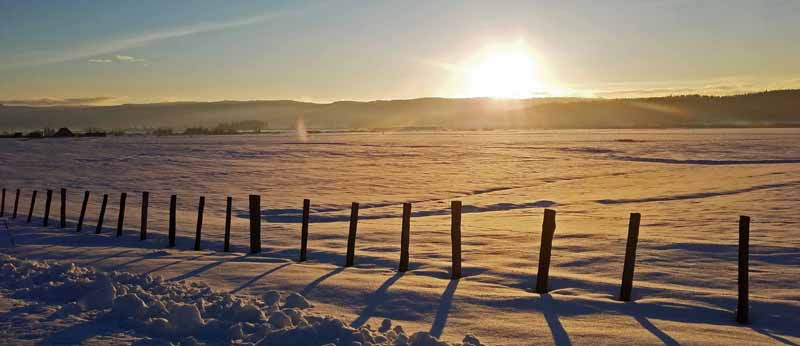 fence in snow at sunset