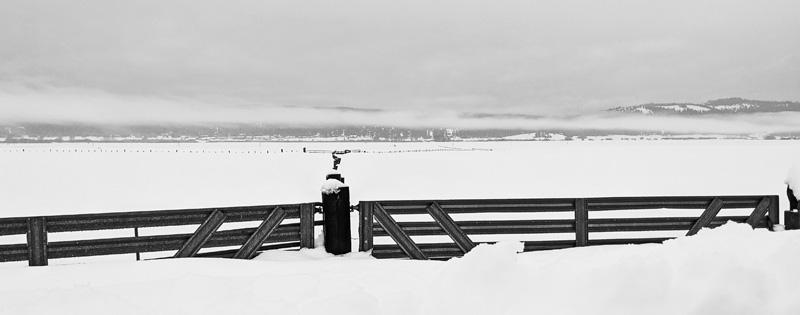 fences and gates, black & white