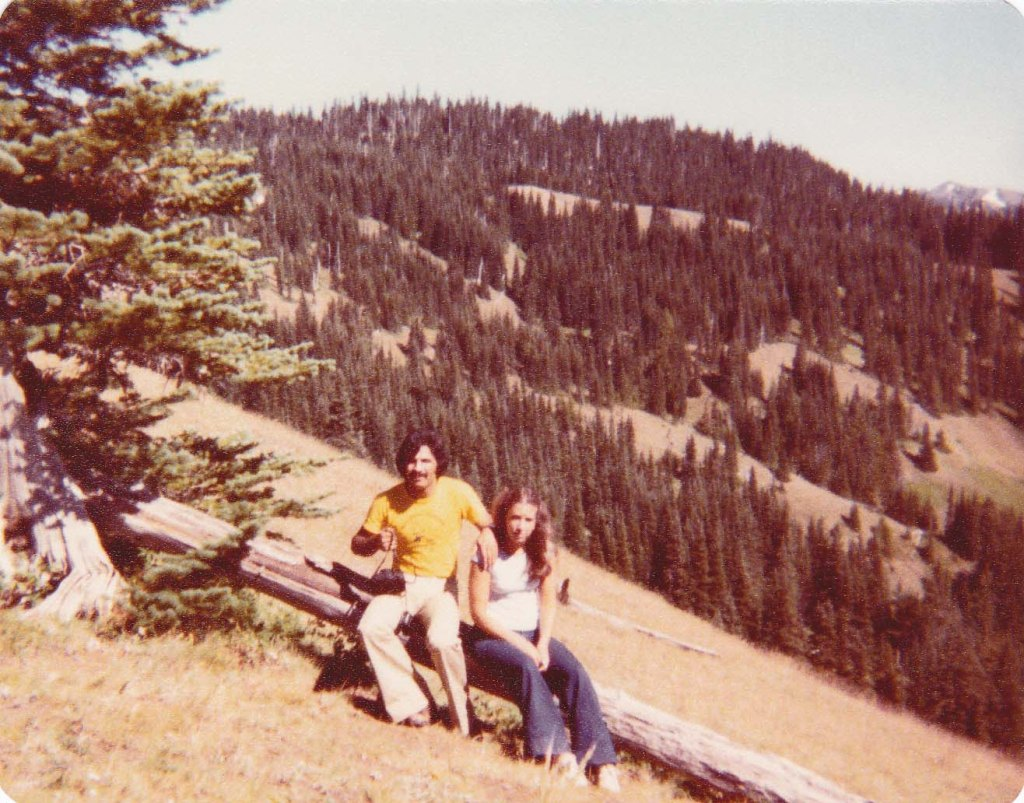 couple sitting on downed tree