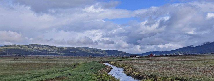 stream and pasture