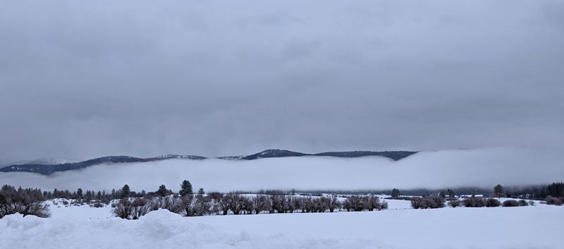 fog, snow, landscape