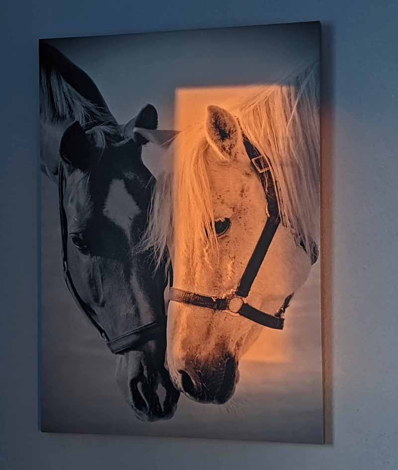 print of horses with sunlight