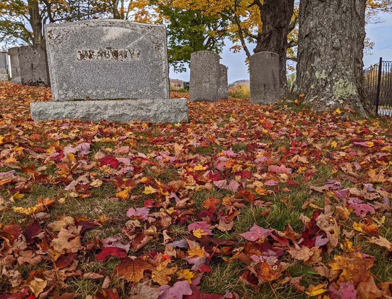 red and orange maple leaves on ground cemetery, near headstones
